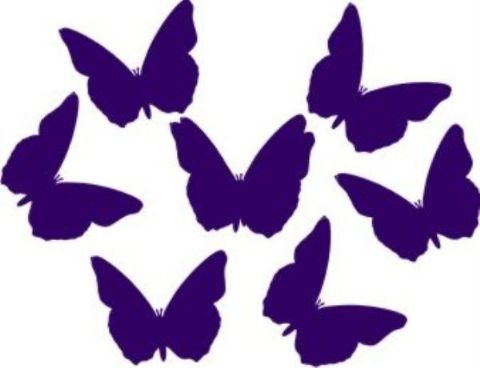 12 Butterfly Stickers.